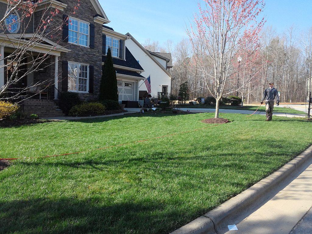 organic lawn care 1024x768